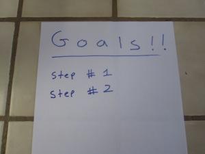 goals 003