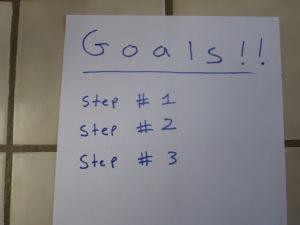 goals 005